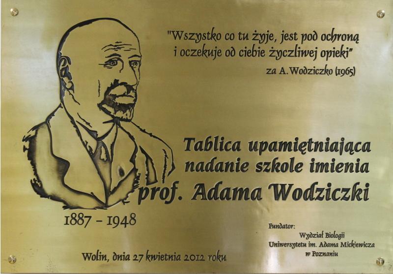 Tablica upamiętniająca nadanie szkole imienia prof. Adama Wodziczki